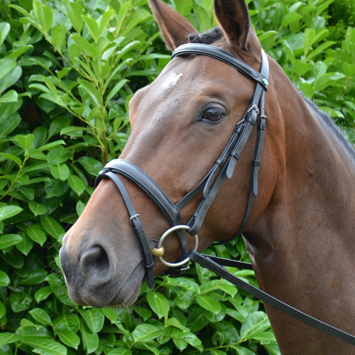 Hy Padded Flash Bridle with Rubber Grip Reins - Black - X Small 1/2''