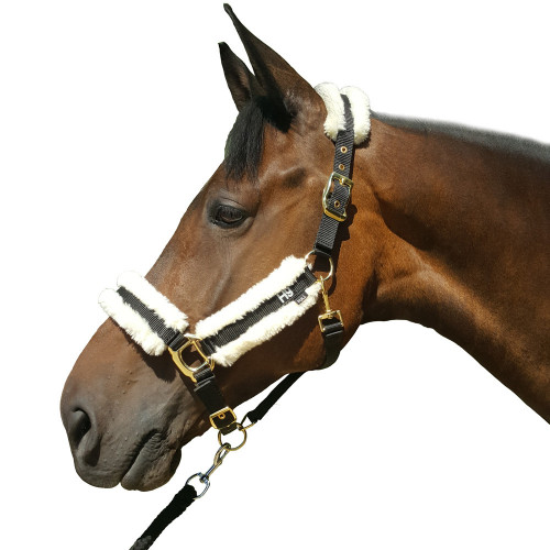 Hy Sheepskin Head Collar - Black/Cream - Pony