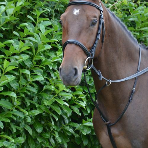Hy Running Martingale - Black - Pony