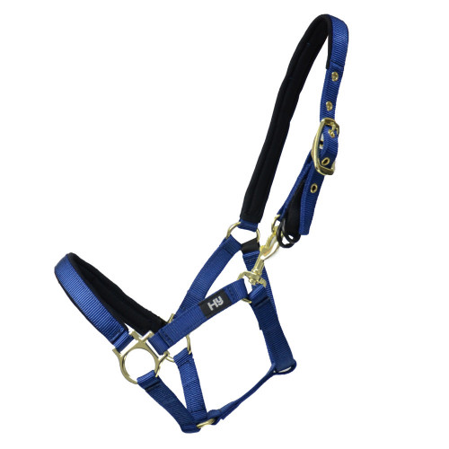 Hy Fieldsafe Small Pony & Foal Head Collar - Royal Blue