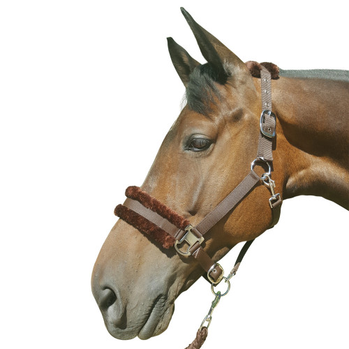 Hy Faux Fur Padded Head Collar with Lead Rope - Brown - Pony