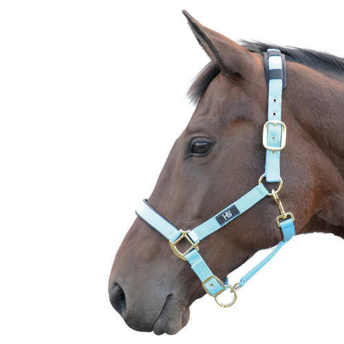 Hy Deluxe Padded Head Collar - Bright Blue - Pony