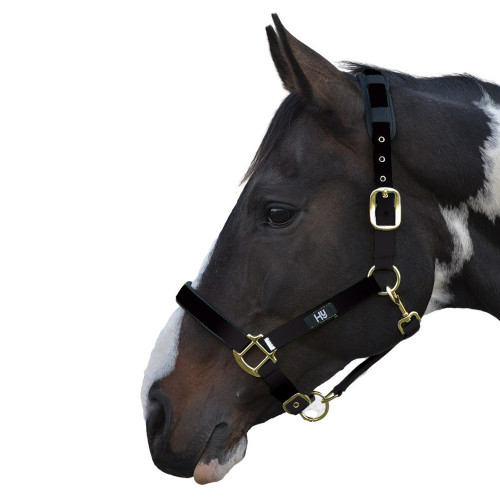 Hy Deluxe Padded Head Collar - Black - X Small