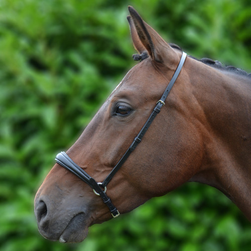 Hy Padded Drop Nose Band - Black - Pony