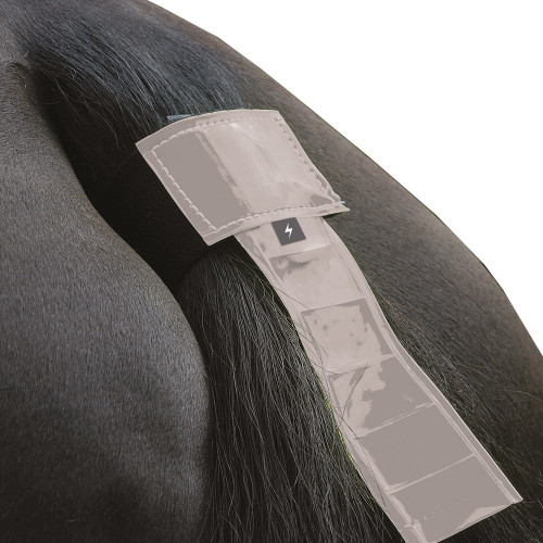 Silva Flash Reflective Tail Band by Hy Equestrian - Reflective Silver in One Size