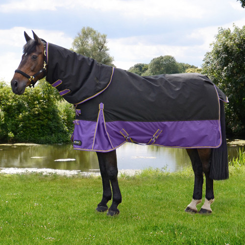 StormX Original 200 Turnout Rug with Detachable Neck Cover in Black, Purple, Yellow in 4'6""