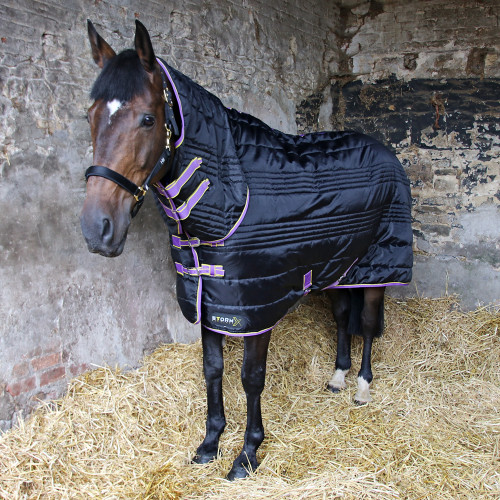 StormX Original 200 Combi Stable Rug in Black, Purple, Yellow in 7'0""