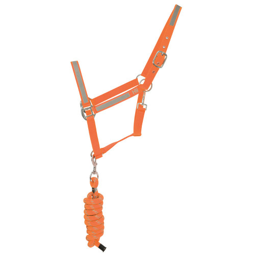 Reflector Head Collar and Lead Rope by Hy Equestrian in Pony in Orange
