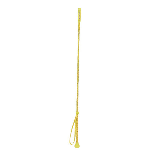 HySCHOOL HyVIZ Riding Whip in Yellow