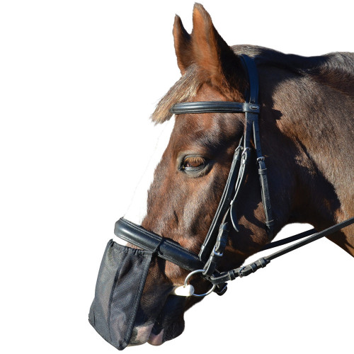Hy Nose Shield - Black - Pony