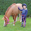 I Love My Pony Collection Hat Cover by Little Rider