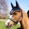 Lancelot Head Collar and Lead Rope by Little Knight