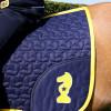 Lancelot Saddle Pad by Little Knight